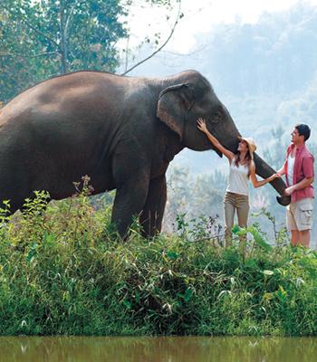 adventure-honeymoon-thailan